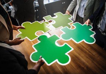 7 Ideas para empresas sostenibles y ecológicas